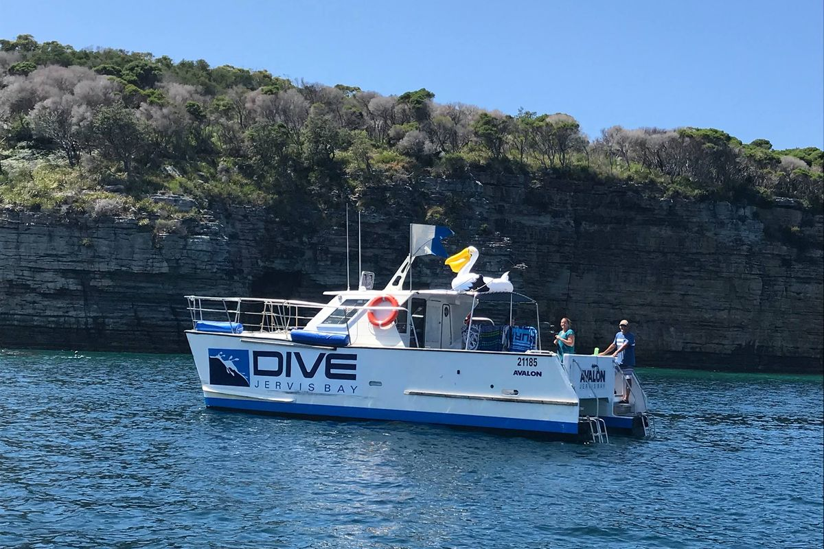 Dive Jervis Bay